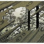 Escher's puddle