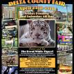Delta County Fair, TX